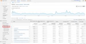 Páginas Google Analytics